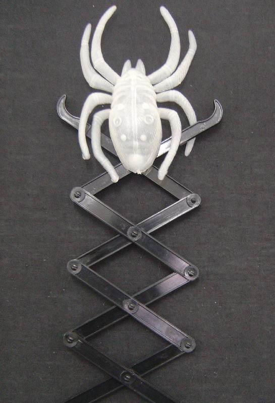 GID - Spider on Spring